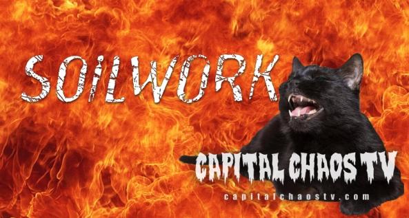 Soilwork cat