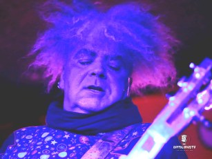 The Melvins 10