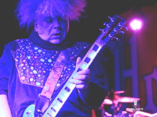 The Melvins 11