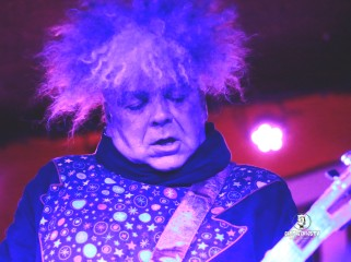 The Melvins 12