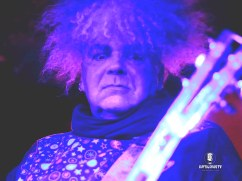 The Melvins 5