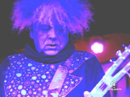 The Melvins 6